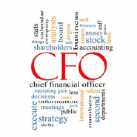 Virtual CFO – 21st century friend or foe?